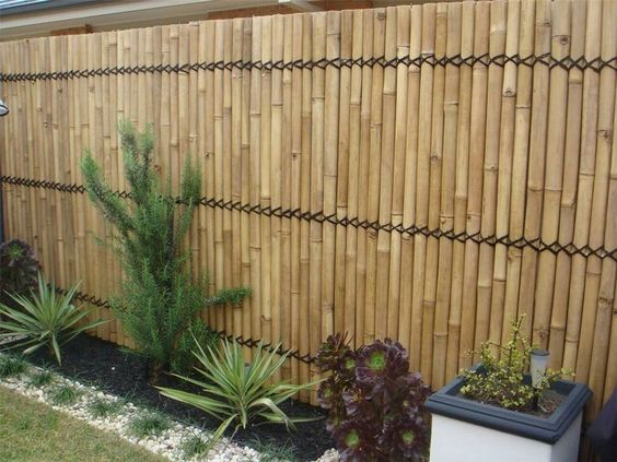 Bamboo Fence Ideas: Simple Gorgeous Design