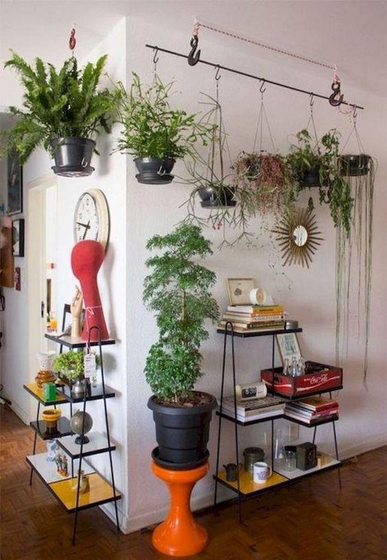 Living Room Plants Ideas 12