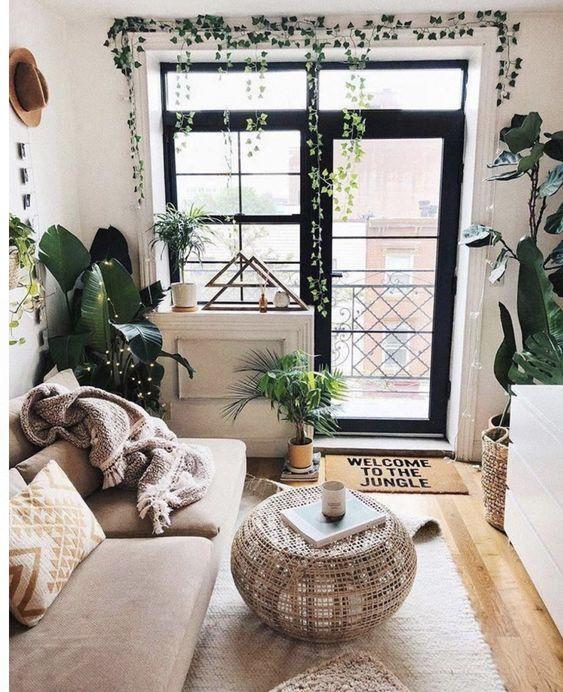 Living Room Plants Ideas: Simple Captivating Decor