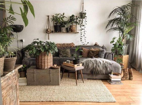 Living Room Plants Ideas 20