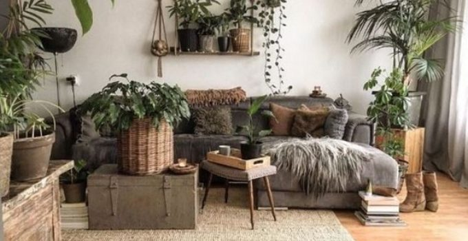 Living-Room-Plants-Ideas-feature