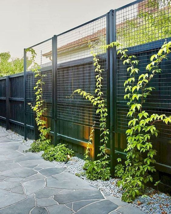 Simple Fence Ideas 11