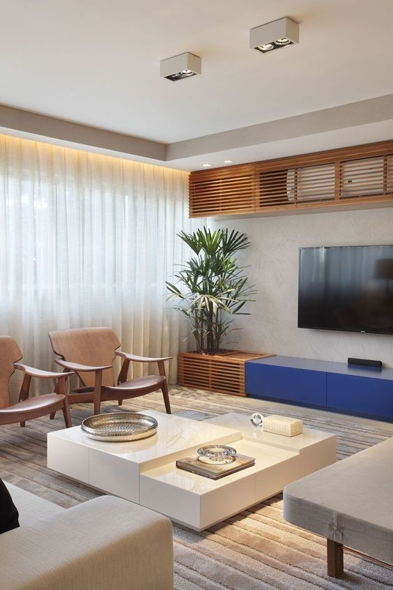 Living Room with TV Ideas 6