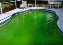 Here's 4 Steps on How to Clean a Green Pool with Bleach Effectively