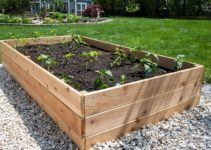 How to Fill a Raised Garden Bed Cheap with Only 5 Easy Steps