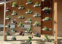 How to Make a Plastic Bottle Garden with Only 5 Easy Steps | DIY Project