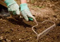 How to Till a Garden Manually All By Yourself with 4 Quick Steps