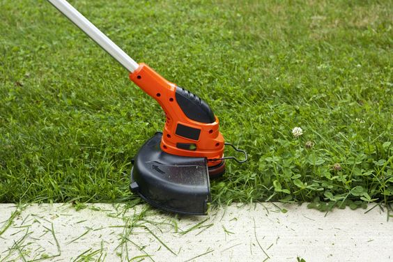 How to Take Care of Your Yard 1