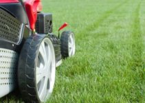 How to Take Care of Your Yard: 14 Useful Lawn Mowing Tips