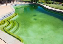 how to clean a green pool fast feature
