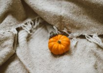 Easy Ways to Transition Your Home Décor From Summer to Fall
