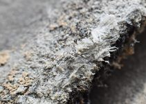 Why Asbestos Testing Is Important Before Doing A Home Renovation
