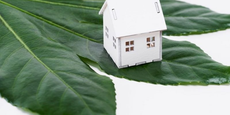Eco-Friendly Homes: Sustainable Changes You Need to Know About