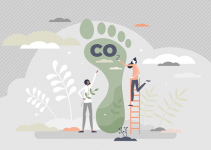 Reduce Your Carbon Footprint with Carbon Neutral and Sustainable Home Furnishings