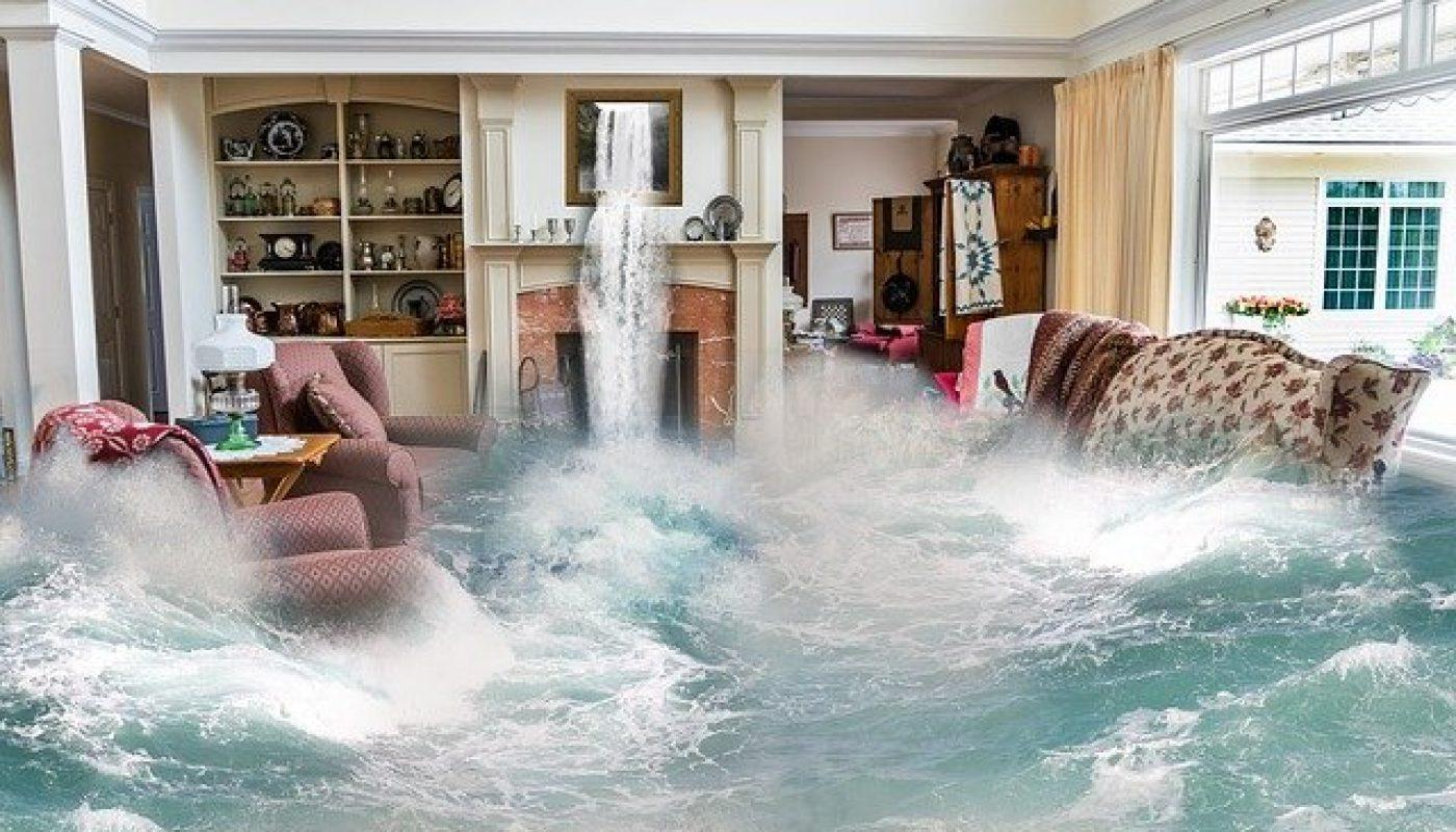 Key Services to Expect from a Water Damage Restoration Process