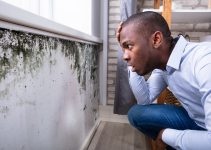 4 Simple Ways To Prevent Mold Growth At Home