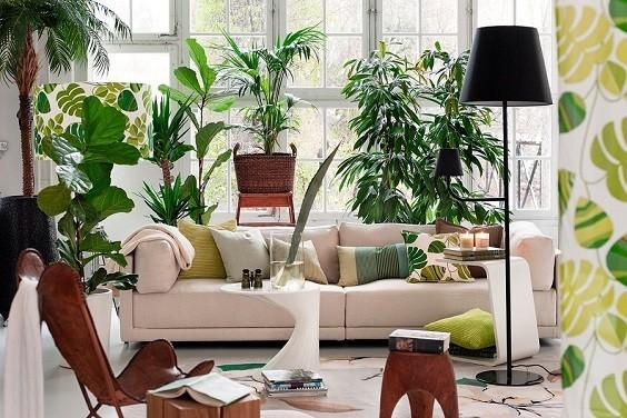 Redecorate Your Home on a Budget 5