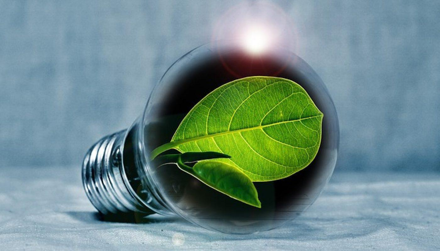 11 green substitutes to lower your carbon footprint