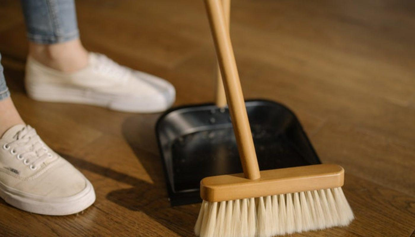 Home Maintenance Tips for a Pest-Free Home