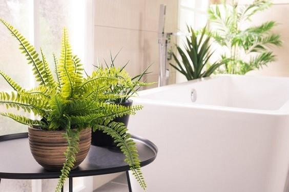 how to add luxury to a bathroom 2