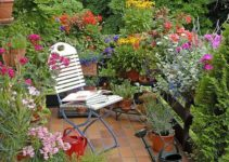 A Simple Guide on How to Decorate Patio with Plants | DIY Project