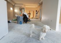 The Best Renovation Tips for Increasing Your Home Value